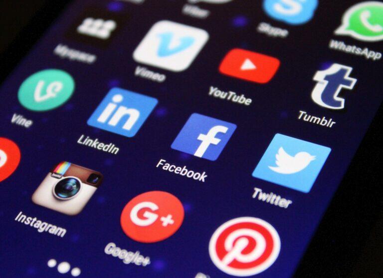 Quel réseau social choisir pour son entreprise ?
